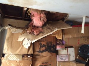 Water Damage from broken pipe.