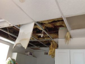 wet insulation in ceiling