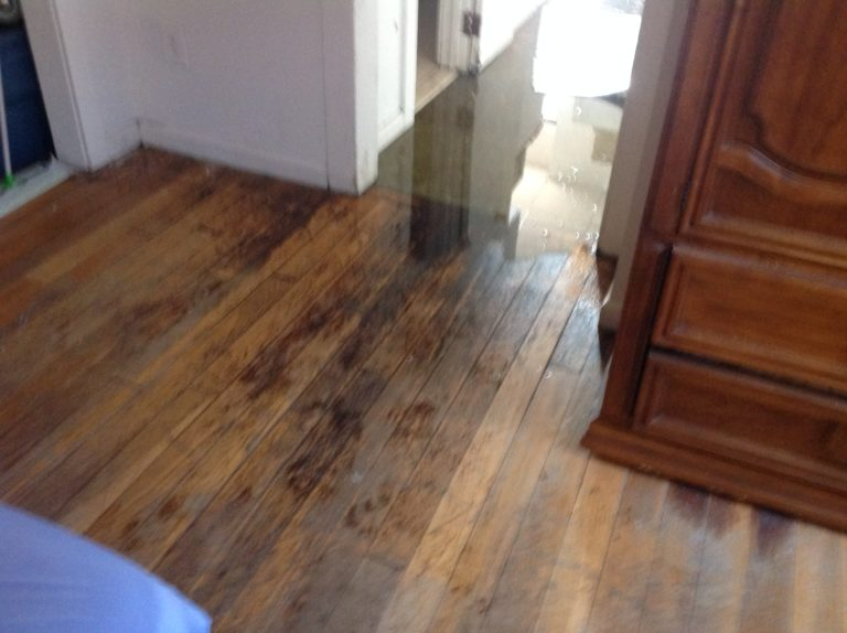 standing water inside house